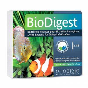 Бактериальная культура Prodibio Biodigest